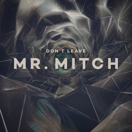Mr. Mitch - Don't Leave (Planet Mu)