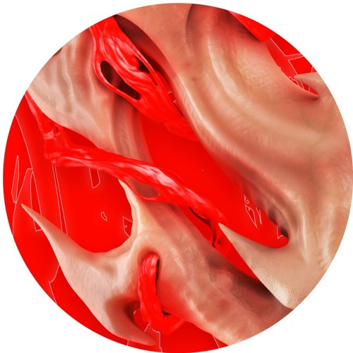 Endgame - Flesh (Hyperdub)