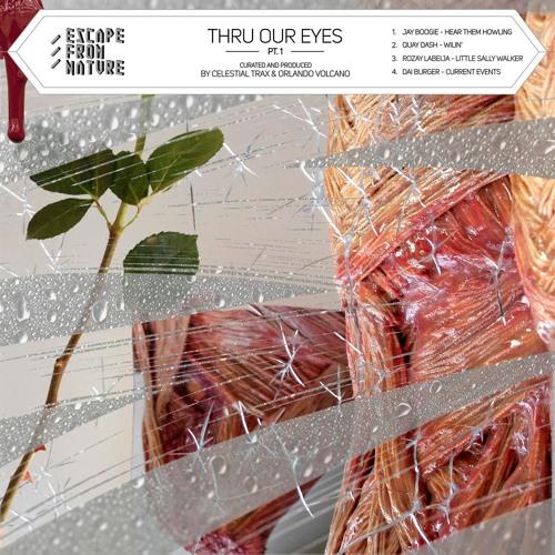Celestial Trax & Orlando Volcano - Thru Our Eyes Pt.1 (Escape From Nature)